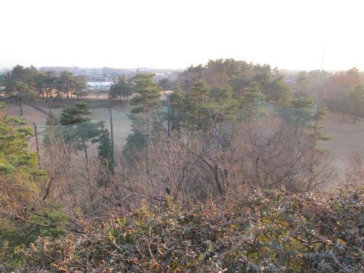 20111229・荒幡富士13