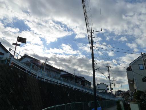 20120114・狭山湖2-01