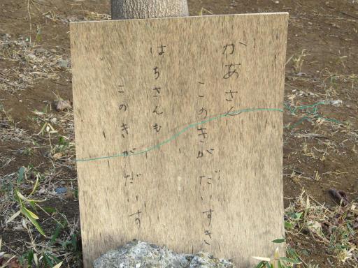 20120114・狭山湖1-09