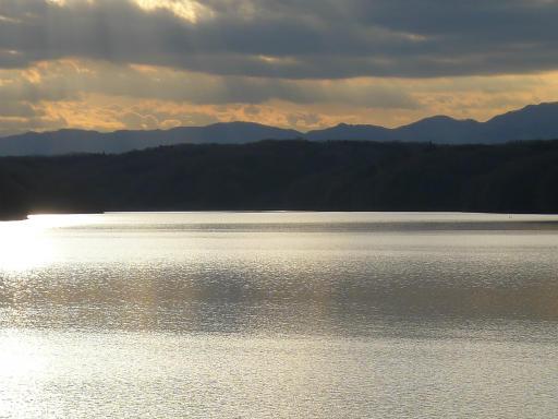 20120114・狭山湖2-12