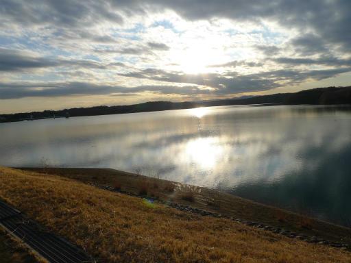 20120114・狭山湖2-10