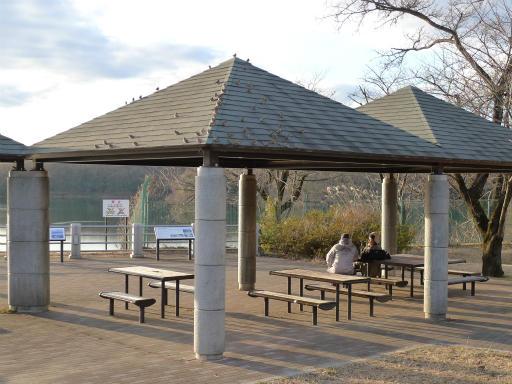 20120114・狭山湖2-13-1
