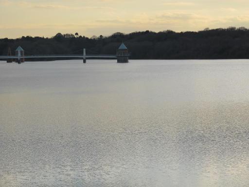 20120114・狭山湖1-16