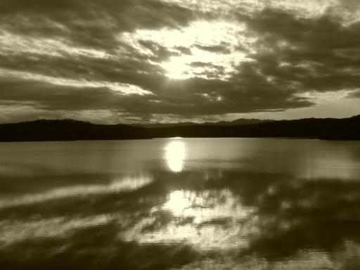 20120114・狭山湖2-19