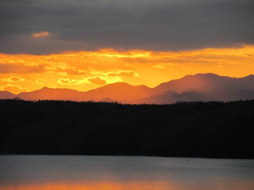 20120114・狭山湖1-22-1
