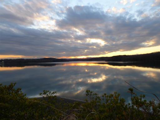 20120114・狭山湖2-20