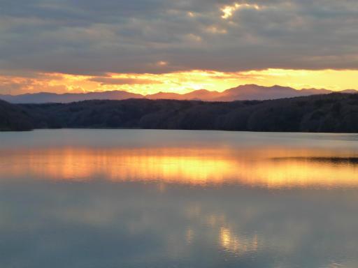20120114・狭山湖2-21