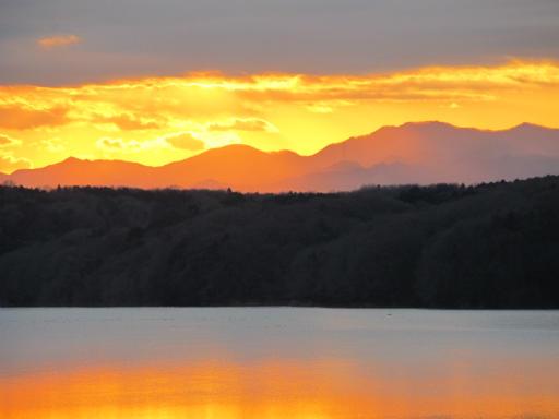 20120114・狭山湖1-22-2