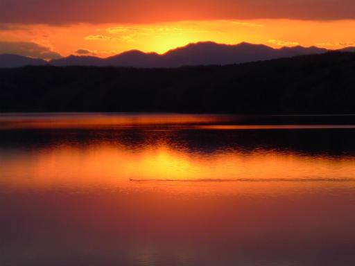 20120114・狭山湖2-26