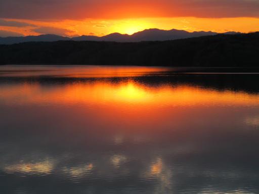 20120114・狭山湖1-25