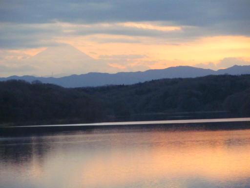 20120114・狭山湖1-28