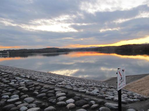 20120114・狭山湖1-27
