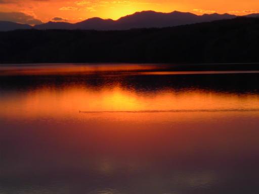 20120114・狭山湖2-26-1