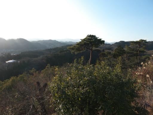 20120114・天覧山RAW02