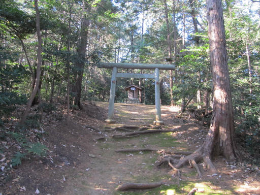 20120114・高麗神社09-2