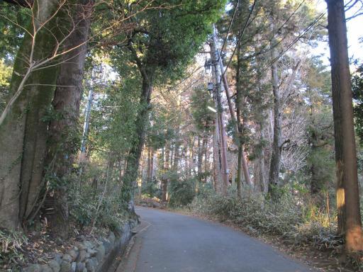 20120114・天覧山02-2