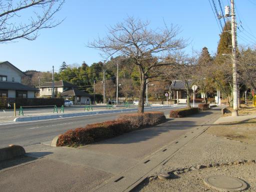 20120114・天覧山01-2