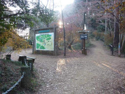 20120114・天覧山05-3
