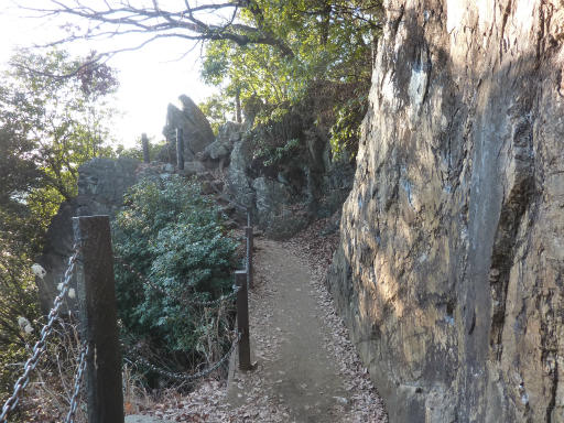 20120114・天覧山12-3