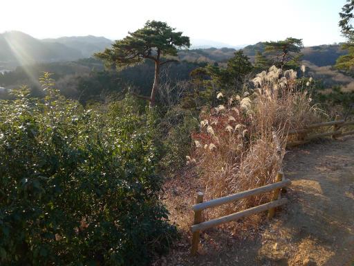 20120114・天覧山20-1