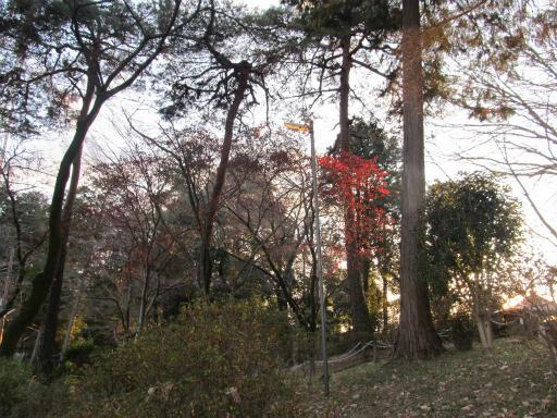 20120114・天覧山24-2