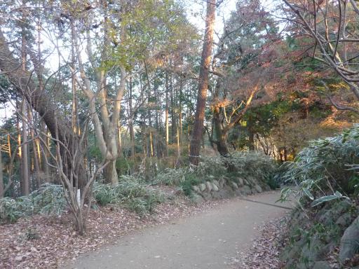 20120114・天覧山23-3