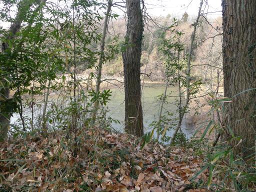 20120115・自然観察会02-1