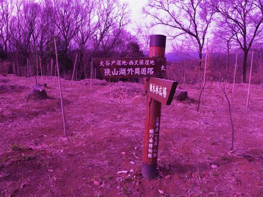 20120115・自然観察会RAW01a