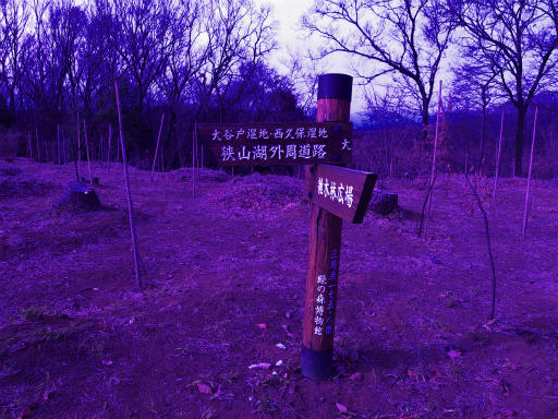 20120115・自然観察会RAW01b