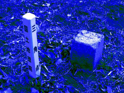 20120115・自然観察会RAW02c