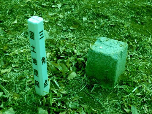 20120115・自然観察会RAW02a