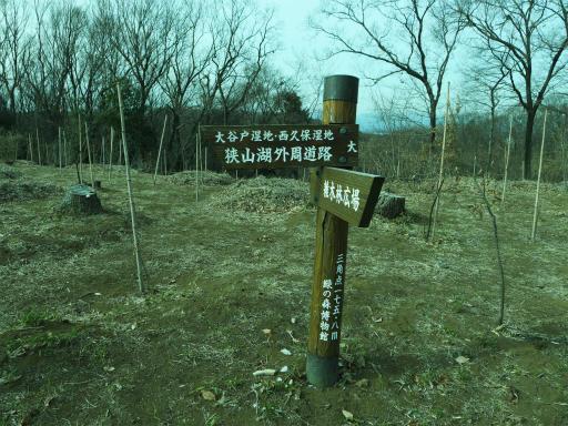 20120115・自然観察会RAW01d
