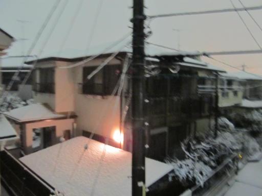 20120123・ドカ雪01