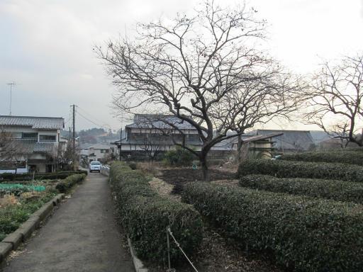 20120122・狭山湖散歩02
