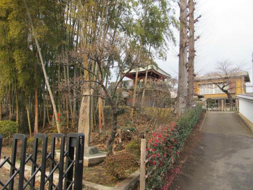 20120122・狭山湖散歩10