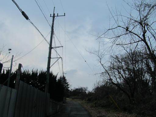 20120122・狭山湖散歩16