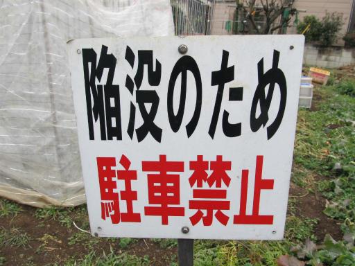 20120122・狭山湖散歩14