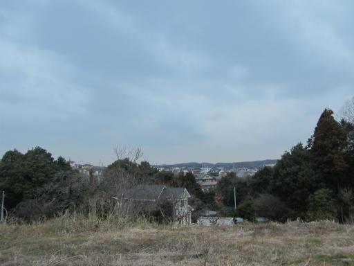 20120122・狭山湖散歩15