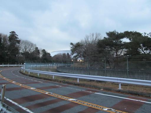20120122・狭山湖散歩21