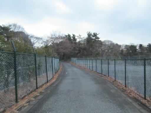 20120122・狭山湖散歩28