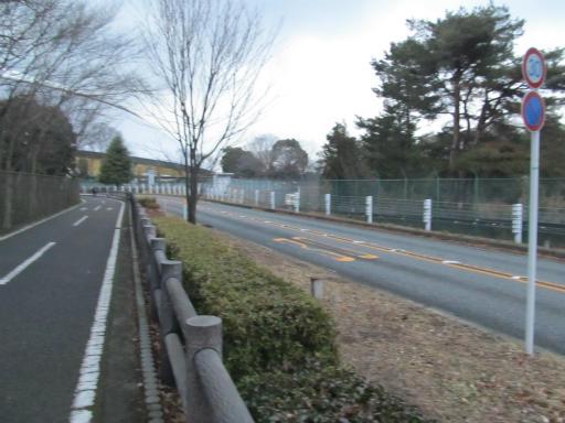 20120122・狭山湖散歩25