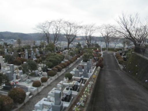 20120122・狭山湖散歩35