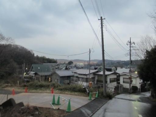 20120122・狭山湖散歩38