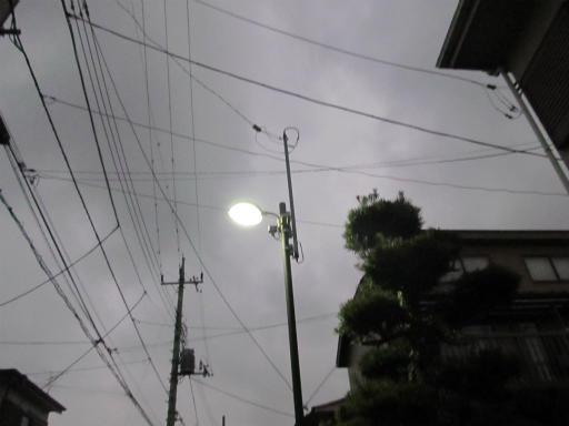 20120122・狭山湖散歩45