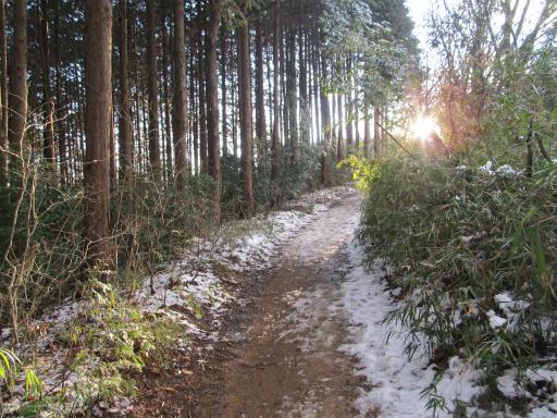 201201125・雪トトロ06P