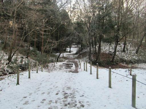 201201125・雪トトロ14P