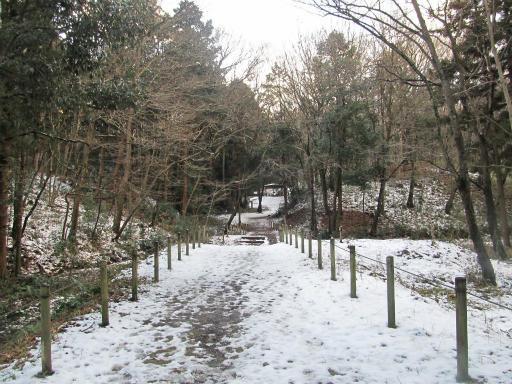 201201125・雪トトロ13P