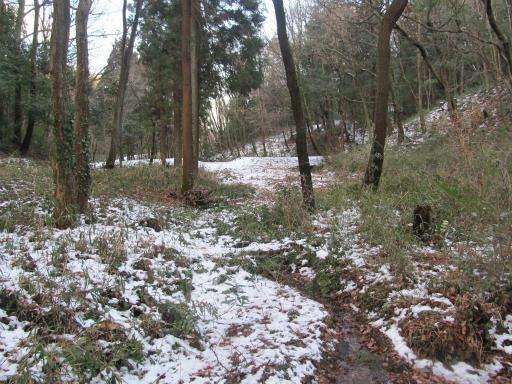 201201125・雪トトロ11P
