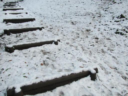 201201125・雪トトロ18P