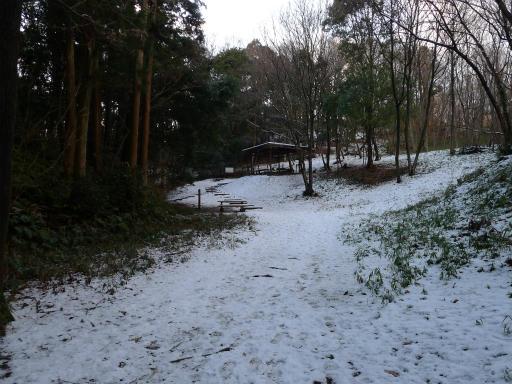 201201125・雪トトロ15L